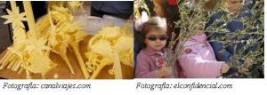 foto palmas y olivos de SEMANA SANTA